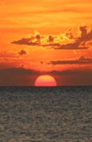 Soleil 2_edited.jpg