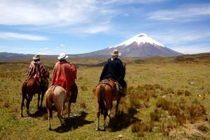 Porvenir_Ecuador_DMC_BP_Y_I.jpg