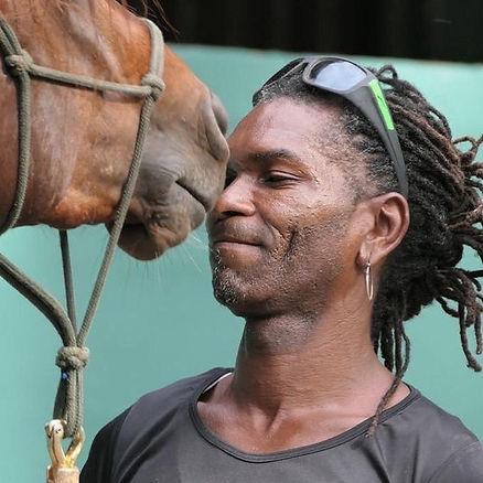 Caribe Horses.jpg