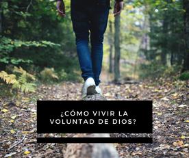 ¿Cómo Vivir La Voluntad De Dios?