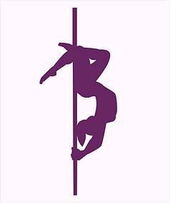 Logo Poledance mit HG.png