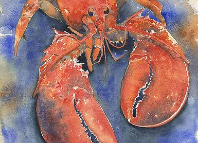 Seafood Series Lobster.jpg