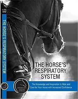 TheHorse'sRespiratorySystem.jpg