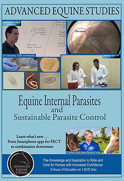 Equine Internal Parasite and Sustainable