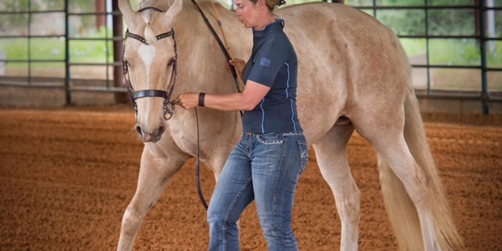 October 2-5 | Quarterly Riding Lessons - Full