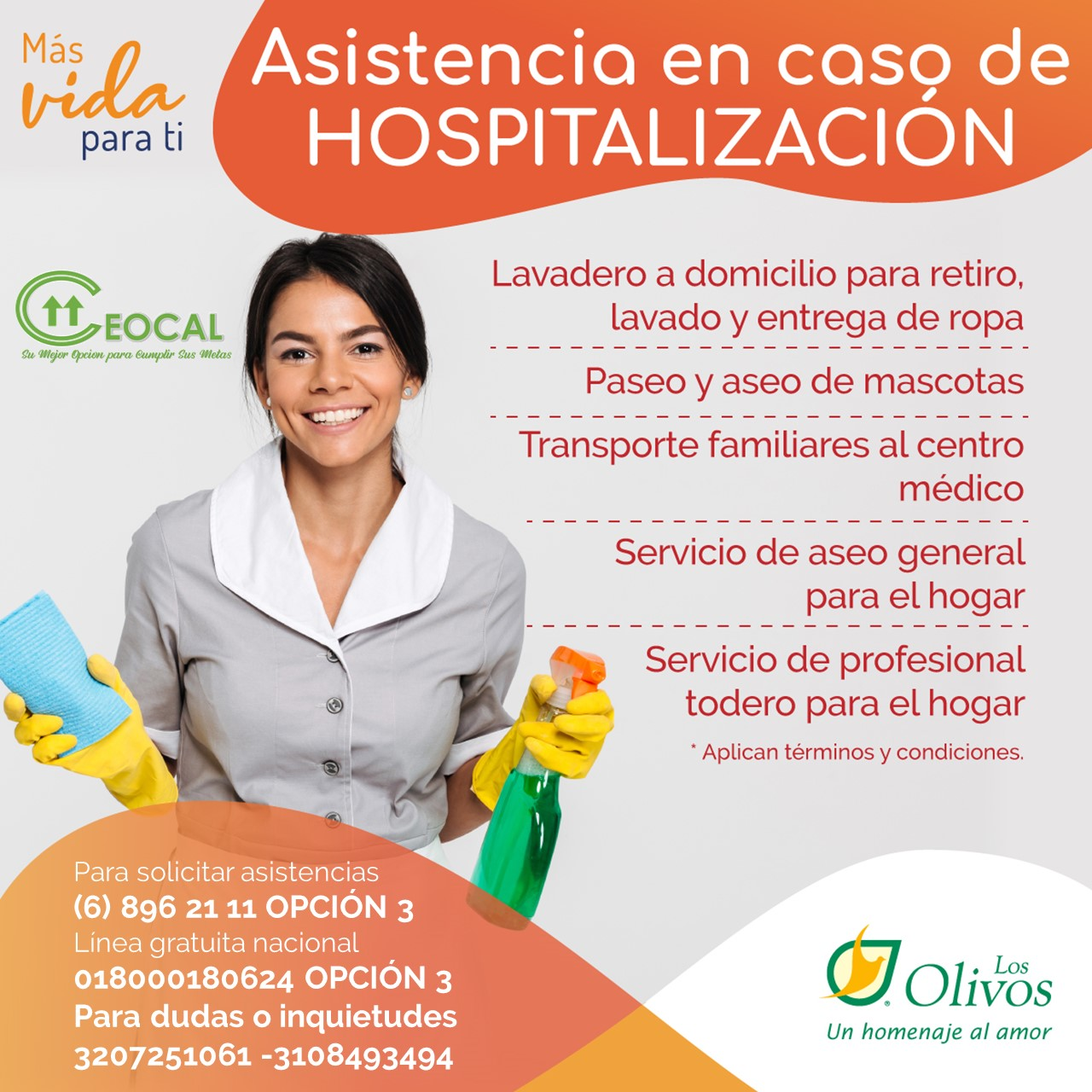 Asis Hospitalizacion