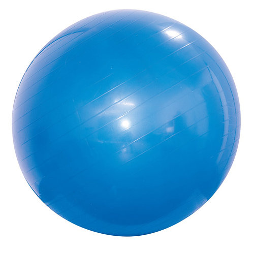 Bola Suíça 65cm para Ginástica Pilates e Fisioterapia