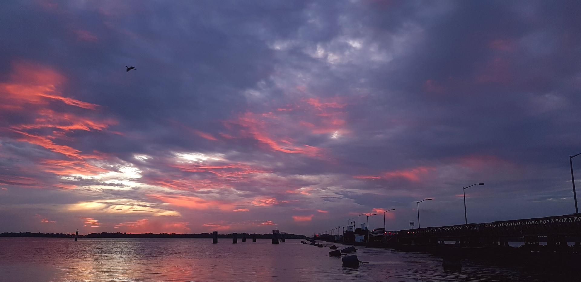 Demerara River.jpeg