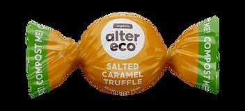 Image of a single salted caramel truffle.
