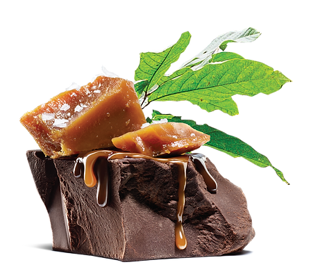 Chunk of chocolate with caramel pieces on top, and leaves behind it
