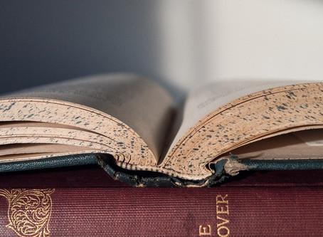 Para gostar de ler os clássicos – Steve Allen