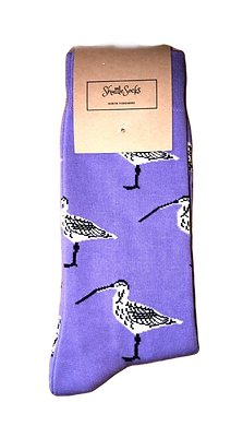 Purple Curlew
