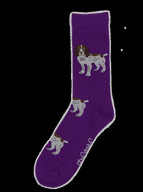 Royal Purple Brown & White Spaniel Socks
