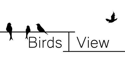 Birds I View.jpg