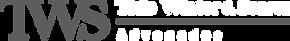 logo wts (curvas).png