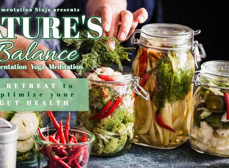 Nature's Balance - Mecklenburg:  5 Tage Retreat mit Fermentation, Yoga & Meditation