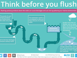 Clean Coasts and Irish Water are asking the people of Mallow to 'Think Before You Flush'