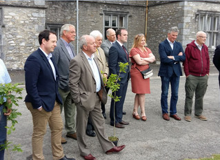 Mallow NeighbourWood Project Launched