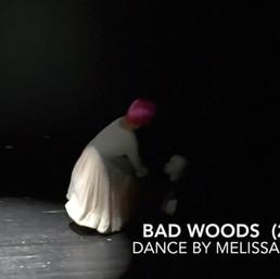 badwoods (excerpt)