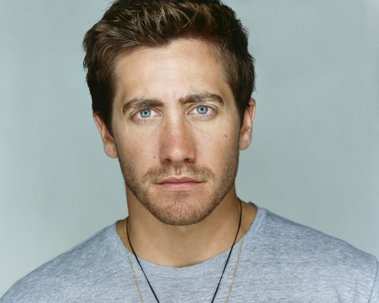 Jake Gyllenhaal al Cinema
