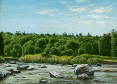 The Wallkill from Libertyville Road 12x16 1975