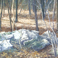Woods in March - A Sketch 12x16 1985