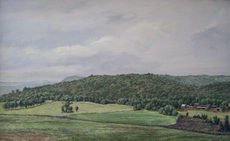 A Grey Day Near Butterville Road 8x14 1982