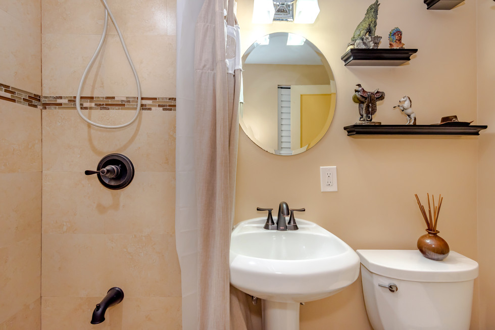 Country-Western Themed Guest Bathroom Remodel