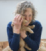 Australian labradoodle puppy cuddling