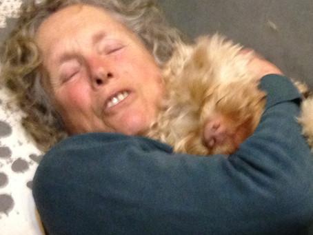 Hugging releases Oxytocin