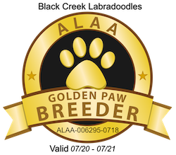Black Creek ALAA Golden Paw Logo 2020.pn