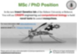 MSC_Phd position_English.png