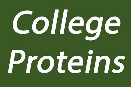 Moynalty Main Sponsor College Proteins