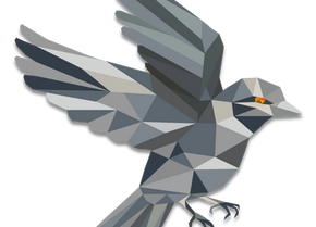 Sparrow Wallet 101