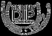 skinnydip_edited.png