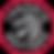 Toronto_Raptors_logo.svg.png