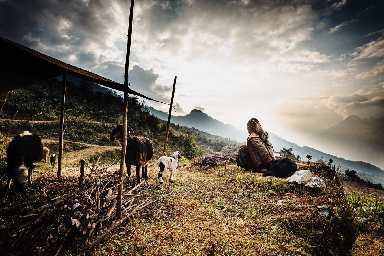 Whilst the needs of the population increase, so does the altitude at which animals can graze and as a consequence, fire wood can be cut. Animal shelters are moved along the graze every two or three days.