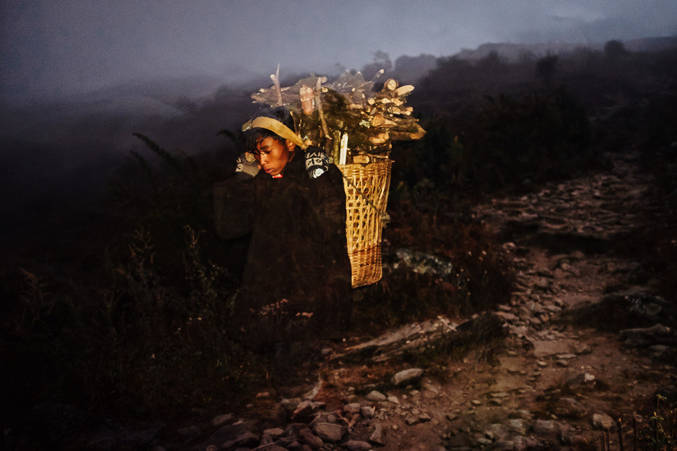 Young porter carrying a bundle of fire wood. The first day is spent ascending to the forest,  finding and cutting and descending to Sodding (3200m) to spend the night. The day after is spent ascending again through the Pangsang pass, finding and cutting additional wood and returning to Tipling. By the 2nd day, 4600m of altitude difference have been walked, usually wearing flip-flops. Wood porters earn an average of 70USD per month.