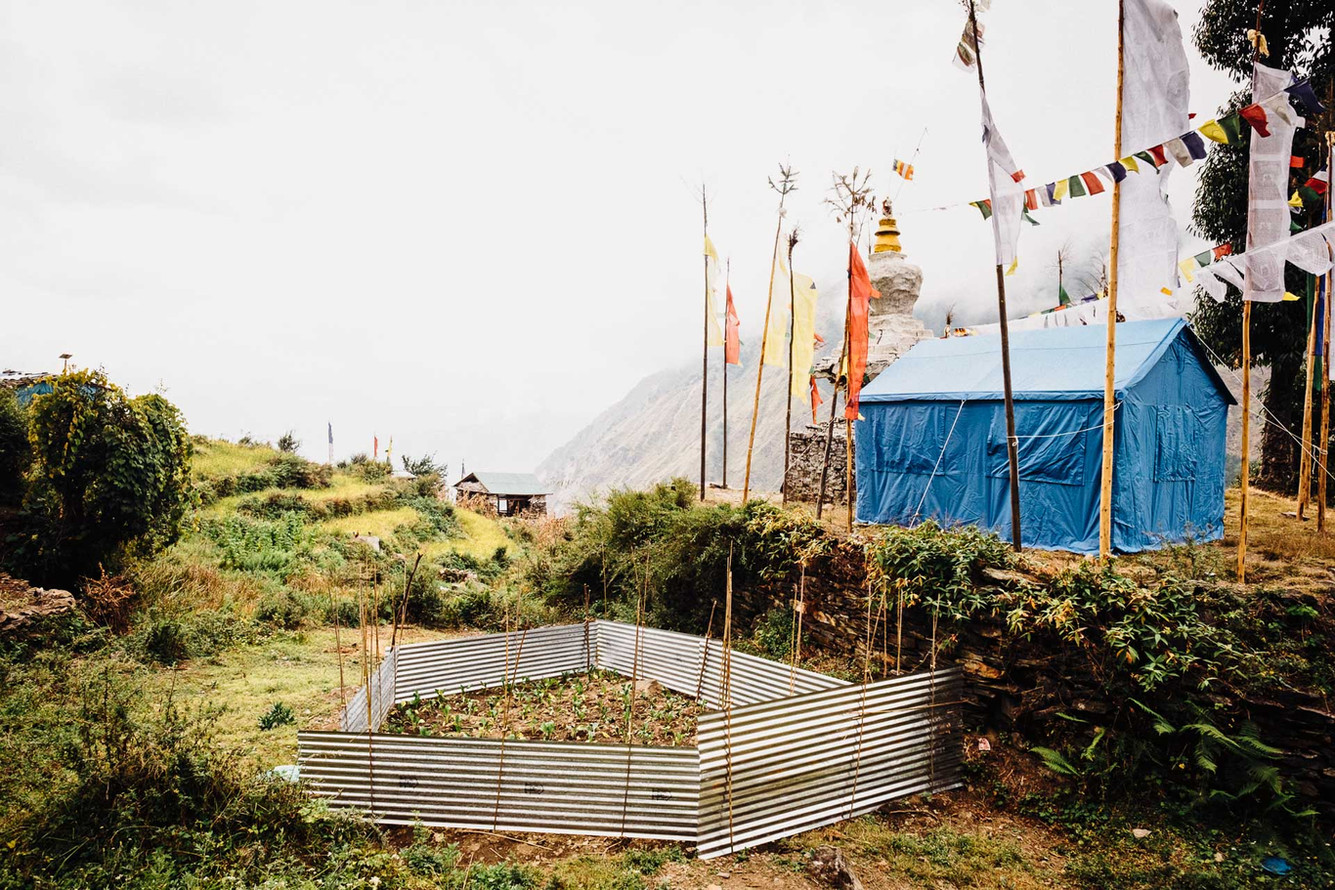 Sheets of corrugated iron being used to shelter a small garden. Although getting the iron sheets has been full of challenges, including the cross of the Pangsang pass, due to the lower literacy level, it is common for Buddhist villages to misuse the resources provided by NGOs.
