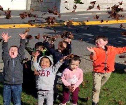 Preschool Fall 430x360