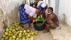 Ziguinchor /l'URSY valorise les fruits et légumes