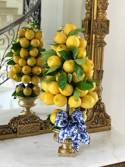 Fresh Lemon Tree For Tuscany  Wedding Decorations