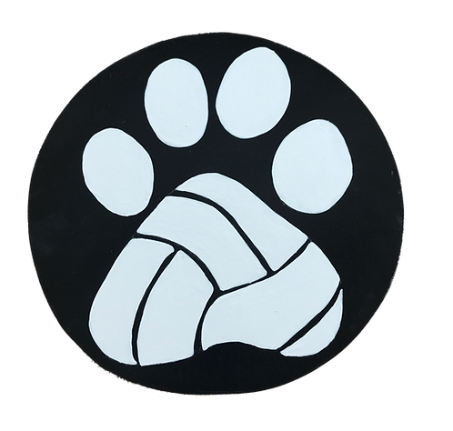 Volleyball Paw