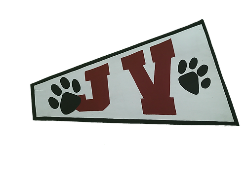 JV Cheer Megaphone