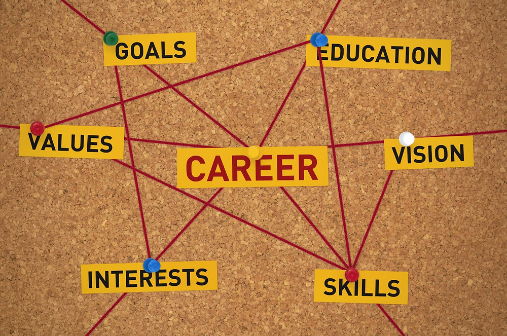 Components of career