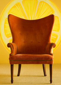 Furniture Photographer Wingback Chair