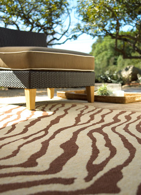 Outdoor Furniture Photography Rug