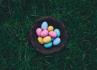 Die 10 größten Mythen um die Eizelle