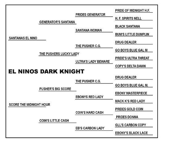 El Ninos Dark Knight PED.jpg