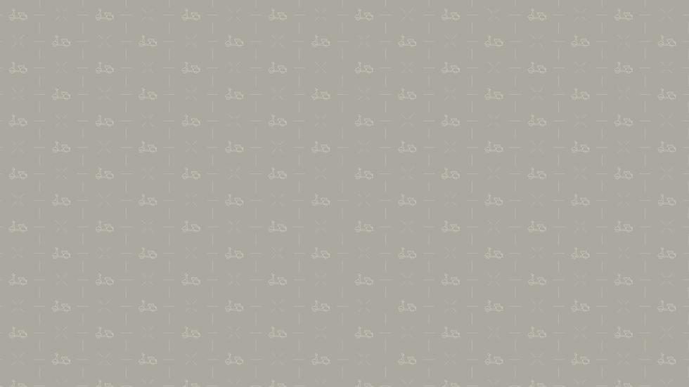 achtergrond strook-01.png